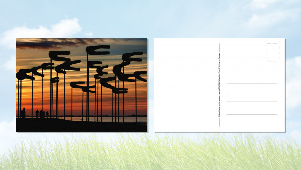 Postkarte Windhosen Husum Dockkoog